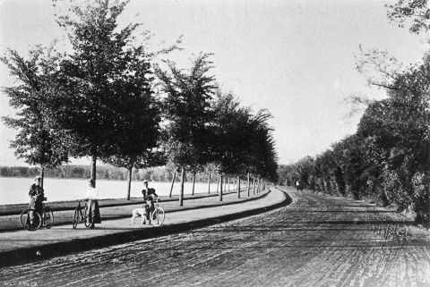 This is one of my favorite park photos. It shows bicycle paths around Lake Harriet in 1896. Notice that the layout of walking path, bicycle path and carriage way, there were no cars yet, is almost identical to today. (Minneapolis Park and Recreation Board)