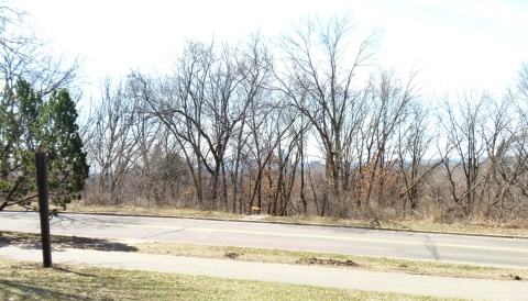 The view from Deming Heights -- without leaves. The downtown Minneapolis skyline is out there -- somehwere.