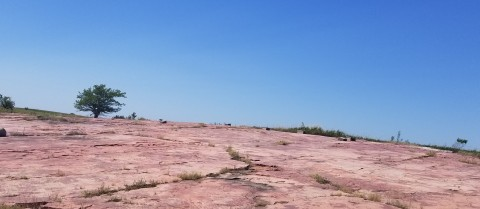 Petroglyph panorama